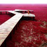 10-must-visit-places-in-india-before-you-die